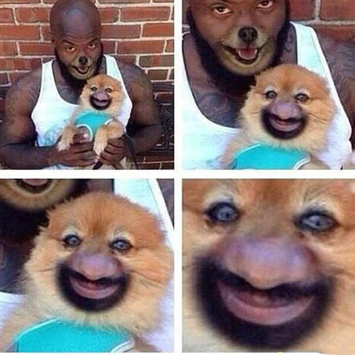 faceswap de hombre y perro