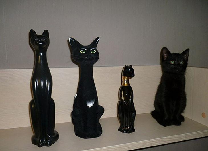 estatuillas de gatos y gato negro