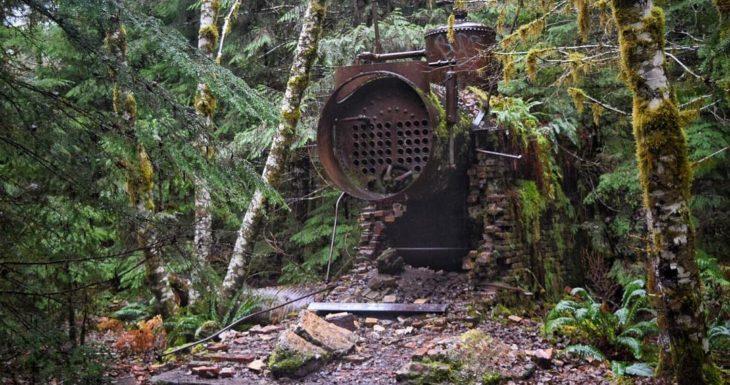 máquina abandonada cubierta de naturaleza