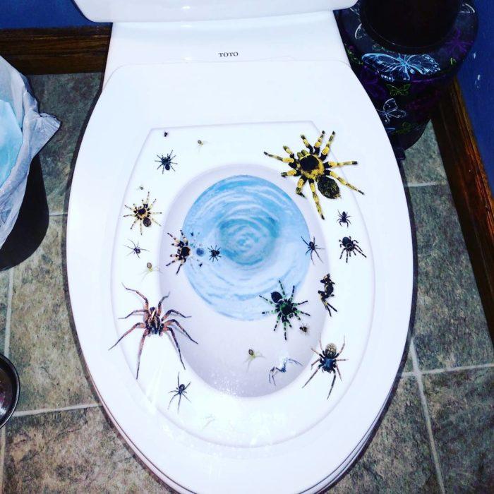 taza de baño con estampas de arañas
