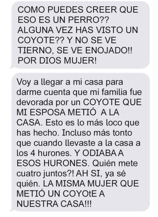 Mensaje de texto mujer bromea a su esposo - como crees que eso es un perro?