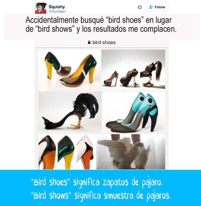 imágenes de zapatos con plumas