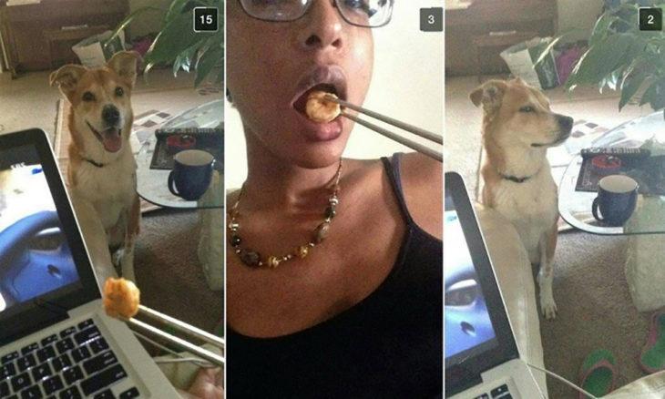 mujer se come un bocadillo mientras perro la ve feo