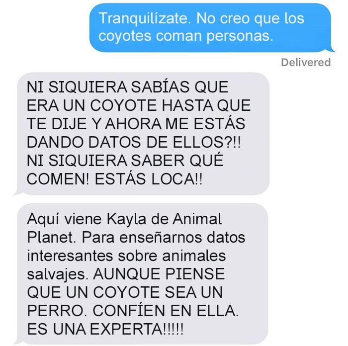 Mensaje de texto mujer bromea a su esposo - no creo que los coyotes coman personas