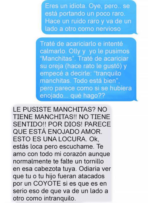 Mensaje de texto mujer bromea a su esposo - le pusiste manchitas?