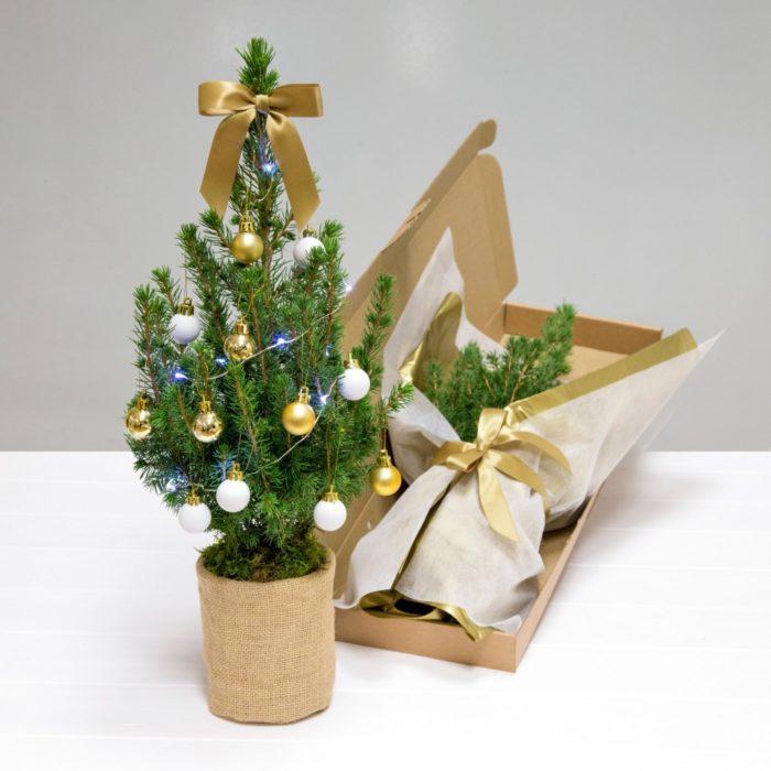 Decoraciones navideñas para flojos - Arbol en caja