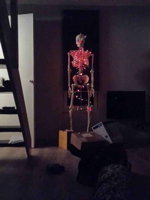 Esqueleto con luces