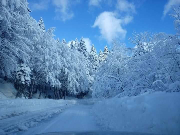 Camino completamente nevado
