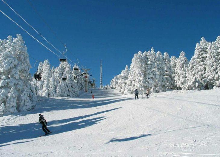 Persona esquiando en la nieve