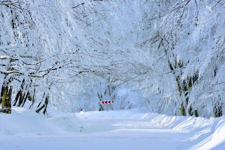 Lugar todo lleno de nieve