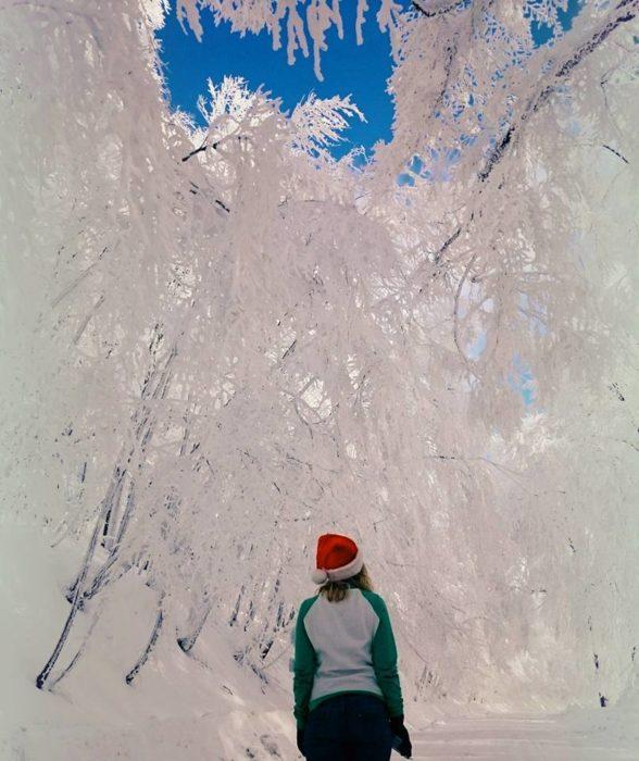 Mujer viendo arboles blancos por la nieve