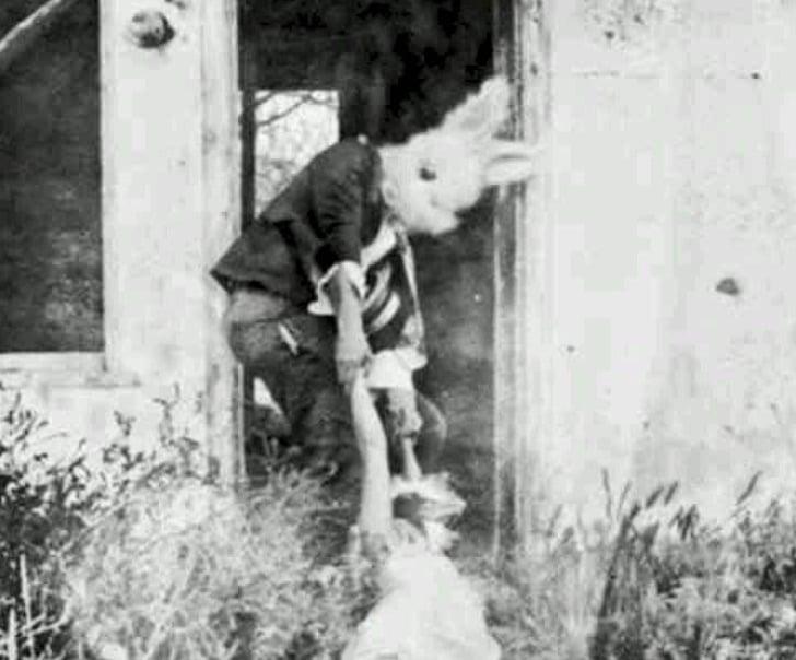 un conejo arrastrando un cuerpo