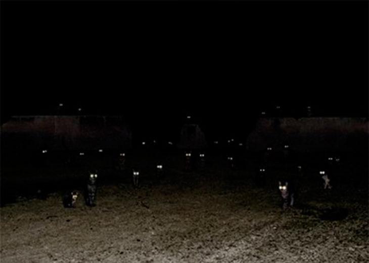 gatos al acecho en la oscuridad