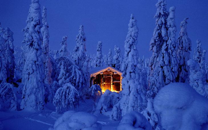 Casa encendida en bosque nevado