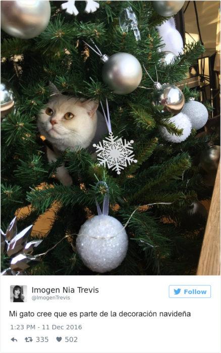 Tuits gatos 2016 -gato en arbol de navidad