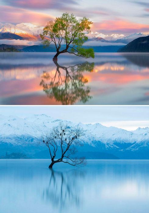 antes y después del invierno