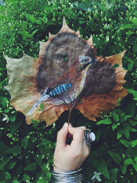pintura realizada sobre la hoja seca de un árbol