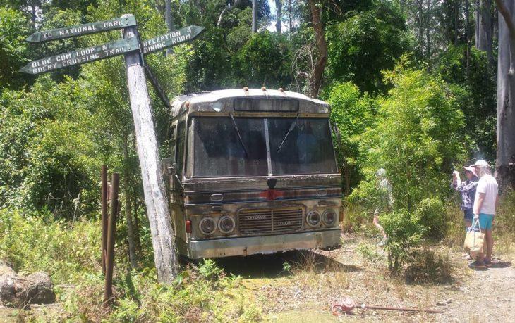 autobús abandonado en el bosque