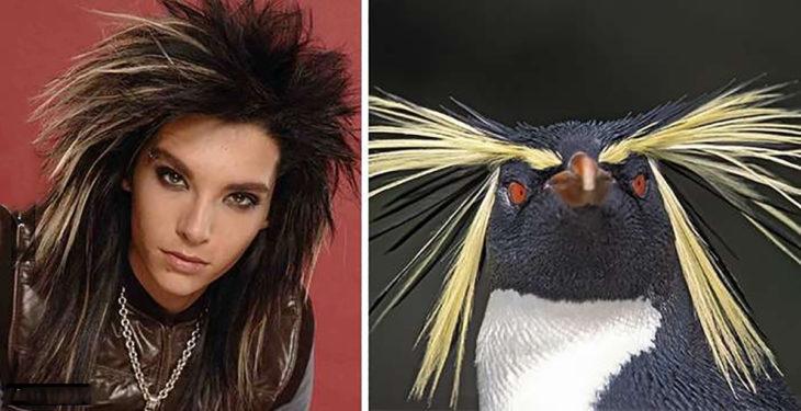 Bill Kaulitz y pingüino penacho