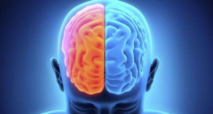ilustración de los hemisferios del cerebro