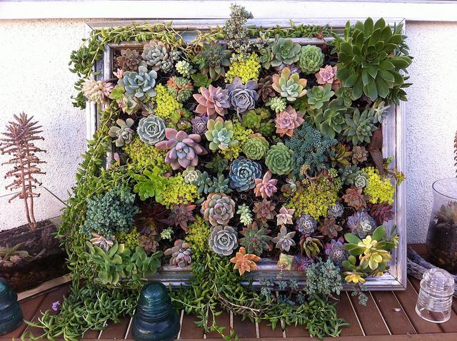 jardin en un cuadro