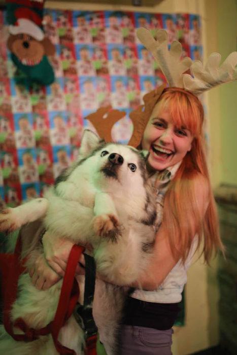 perro asustado en navidad