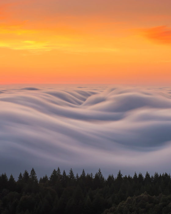 olas de niebla al atardecer