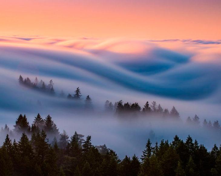 olas de niebla realmente impresionantes