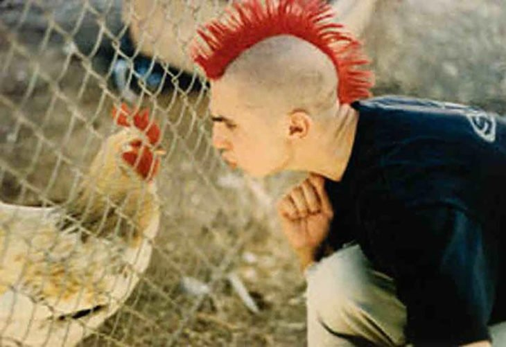 pollo y chico punk