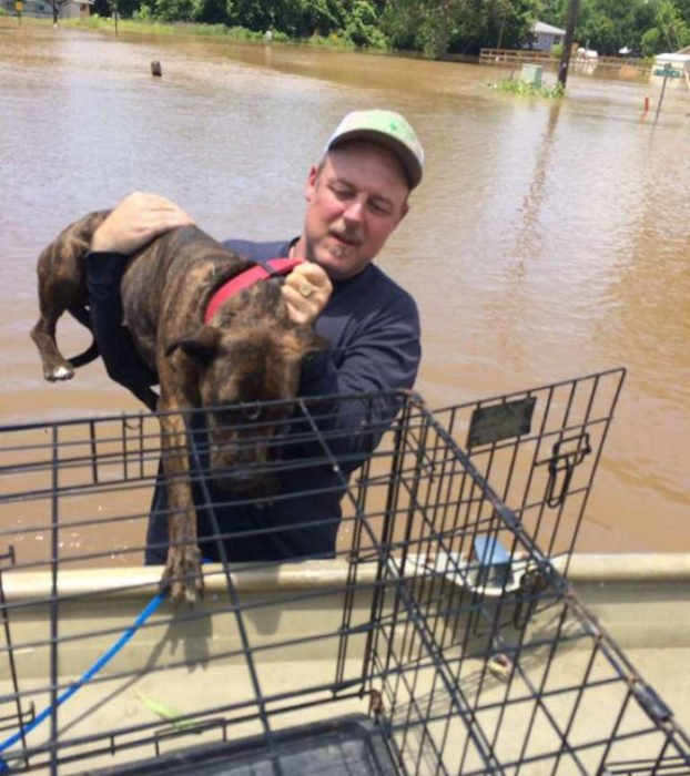 hombre sosteniendo un perro