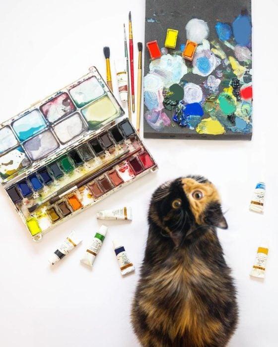 Gata quimera en una mesa con pinturas de arte