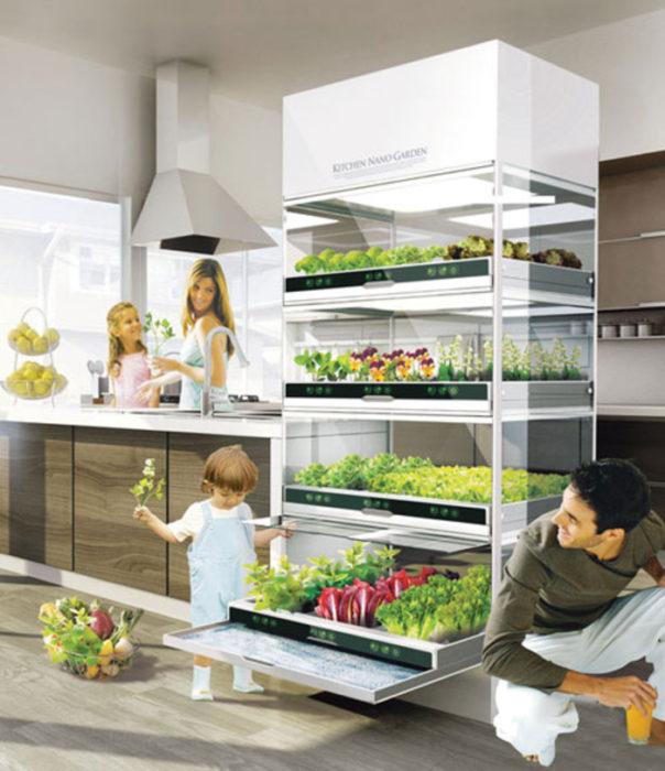 10 cosas casa ideal jardin hidrofonico en la cocina