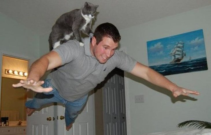 un gato volando sobre un humano