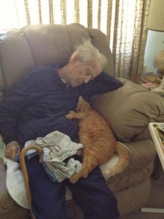 un hombre mayor y su fiel compañero: un gato
