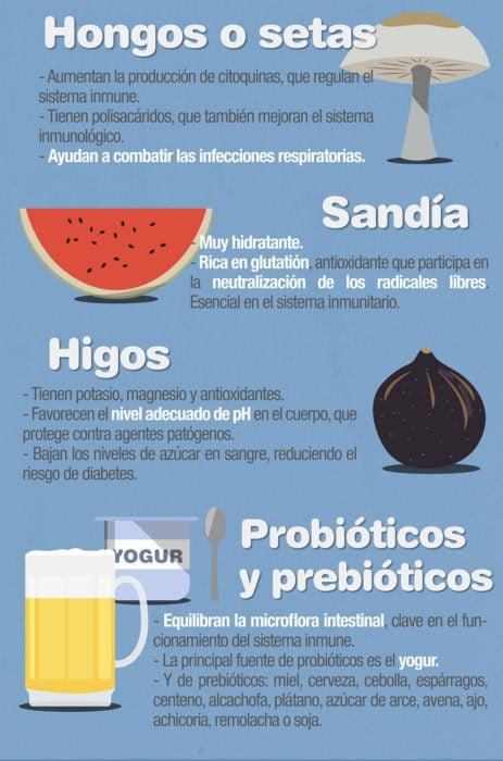 infografía 10 alimentos que aumentan tus defensas parte 3