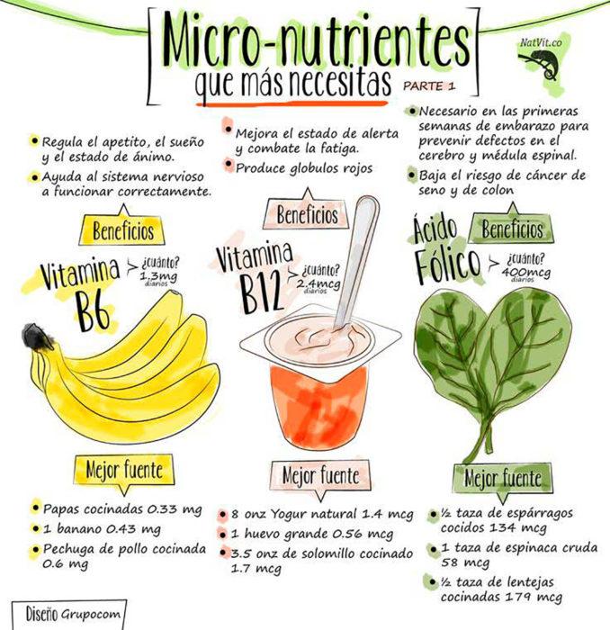 infografía sobre micronutrientes