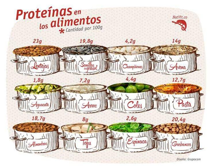 infografía alimentos con proeínas