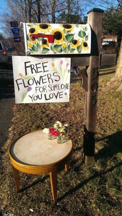 20 fotos para creer en la humanidad flores para todos