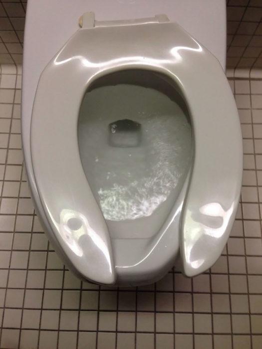 tapa de taza de baño mal puesta
