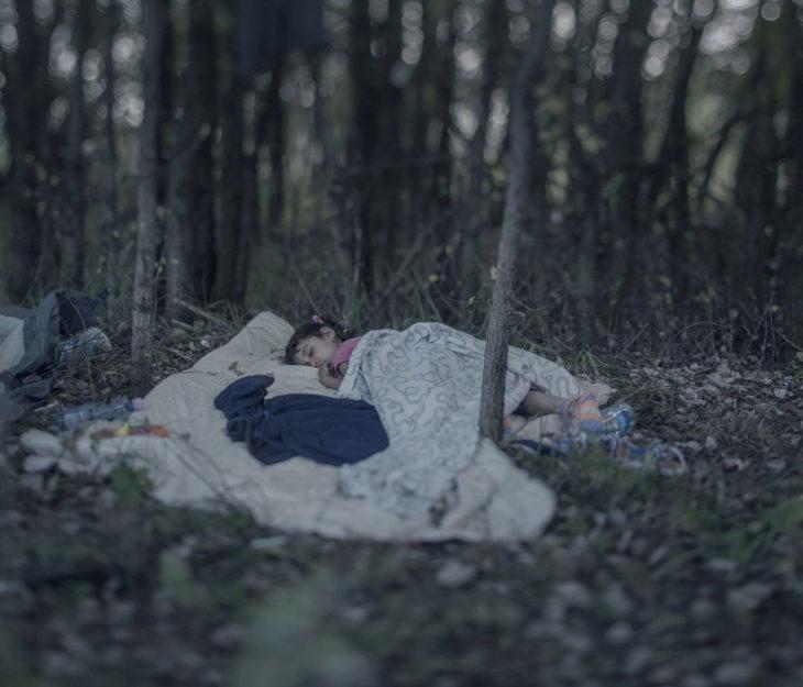 Niña dormida en medio del bosque
