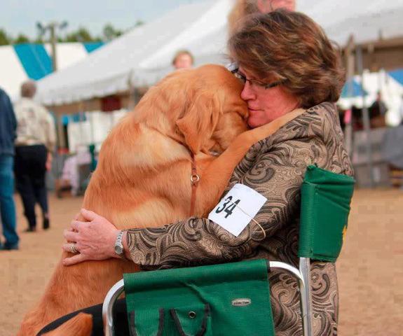perro abraza a mujer en silla de ruedas