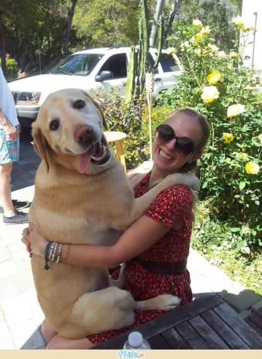 perro y dueña sonriendo para la foto