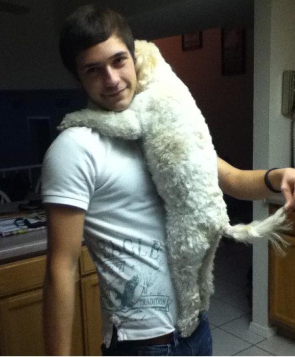 perro colgado de su dueño