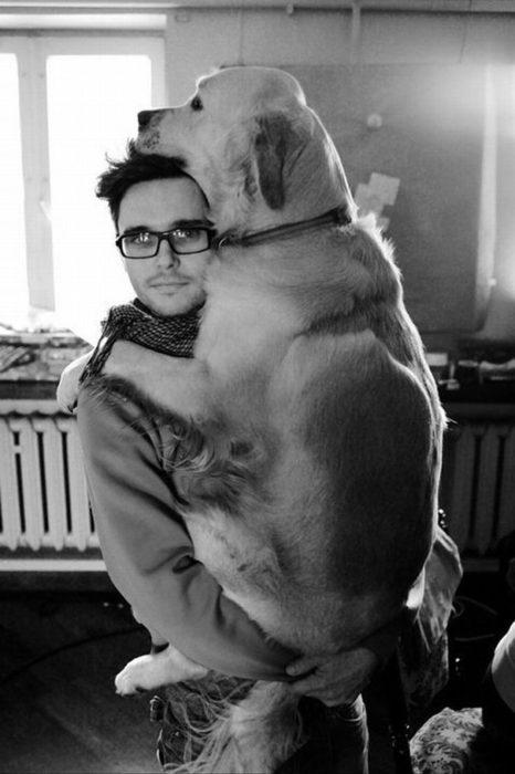 perrote en brazos de su dueño