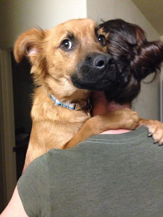 perro abrazando a su dueña