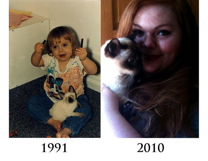 Antes y despues mascotas 10