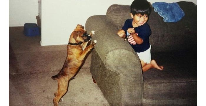 Antes y despues mascotas 6