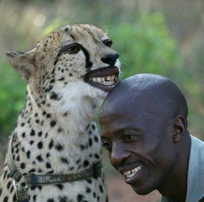 Batalla cheeta 13