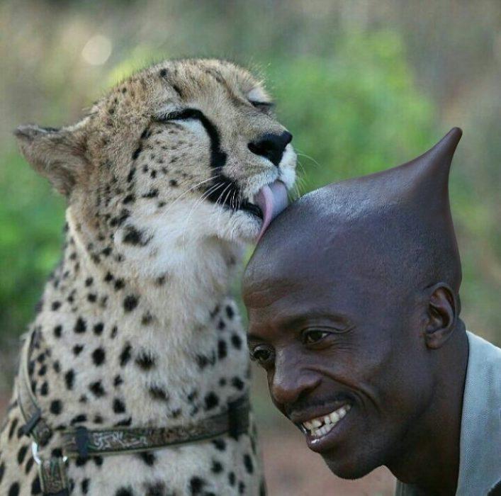 Batalla cheeta 2