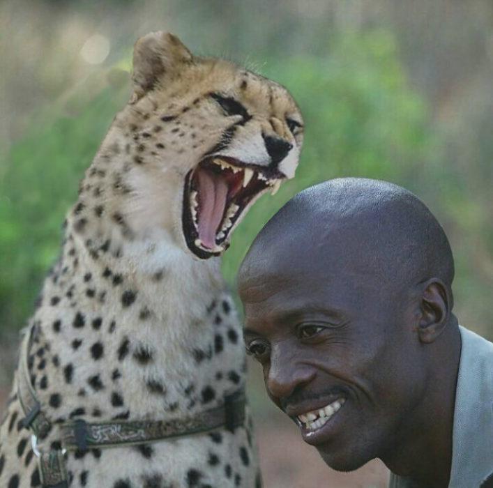 Batalla cheeta 9